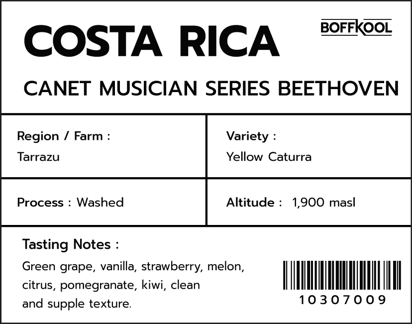 CA/CR Canet Musician Beethoven (1kg.)